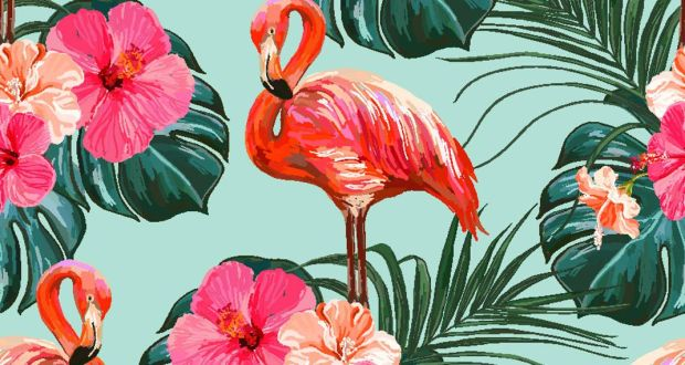 flamingo-570